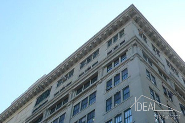 Huge, Immaculate 1956-sf Commerical Loft in Dumbo! 3