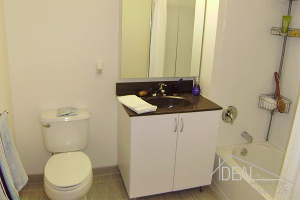 Spectacular 2BR in Fort Greene Luxury Building! 6