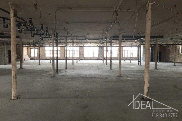Amazing Raw Office Space in Bushwick! 0