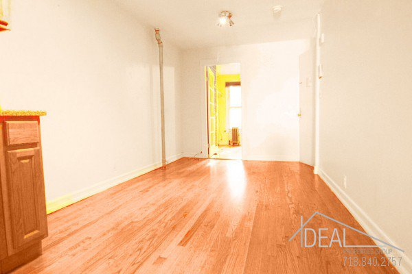 1 MO FREE - NO FEE! Super 2 Bedroom 2 Bathroom Apartment for Rent  in Park Slope! 0
