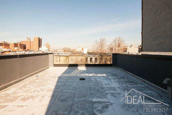 169 Lexington Ave #2, Brooklyn, NY 11216 - Bedford Stuyvesant, 2 Bed 2 Bath Condo for Sale 11