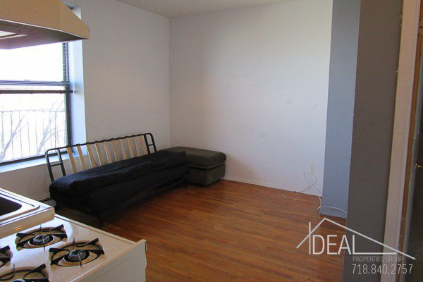 Rented: NO FEE!! Wonderful 2 Bedroom Duplex Apt for Rent in Park Slope, Pets Welcome! 1