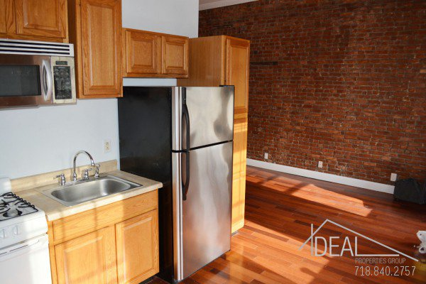 Sunny 1 Bedroom Apartment for Rent in Park Slope 3