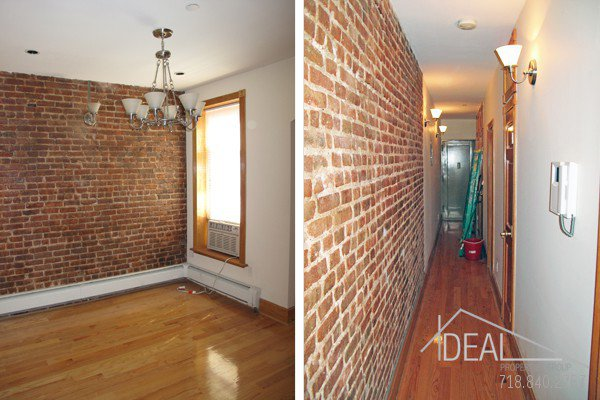 Perfect 1 Bedroom Apartment for Rent in Park Slope 1