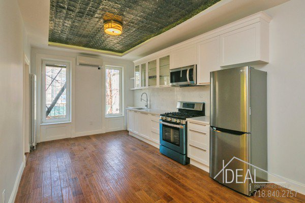 98 Underhill Avenue, Brooklyn NY 11238 - Gut Renovated 1.5 Bedroom 1 Bathroom Apartment for Rent in Prospect Heights Townhouse! 0