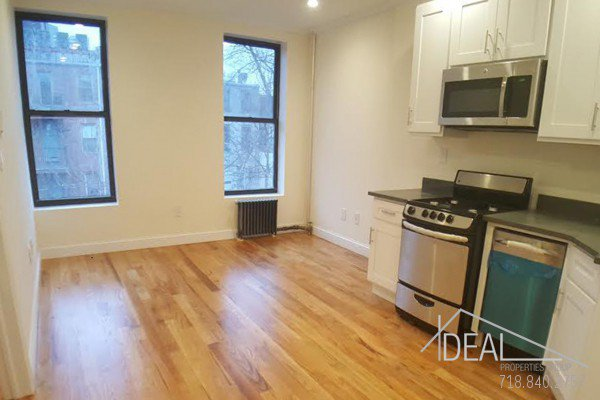 Awesome 1 Bedroom Apartment for Rent in Prime Park Slope! 0