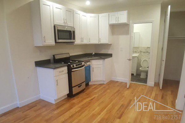Awesome 1 Bedroom Apartment for Rent in Prime Park Slope! 3