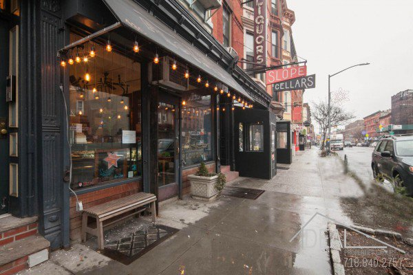 Great Opportunity! Business for Sale in South Slope  0
