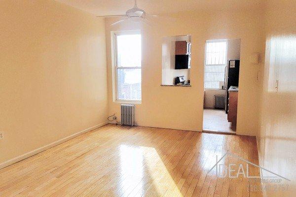Amazing 1 Bedroom Apartment in East Williamsburg! 0