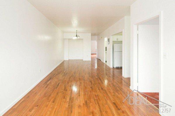 3 Bedroom 1.5 Bathroom Apartment for Rent in Bushwick! 1