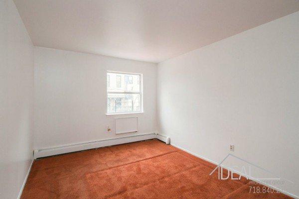 3 Bedroom 1.5 Bathroom Apartment for Rent in Bushwick! 3